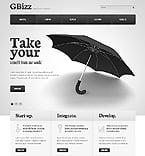 Website  Template 40317