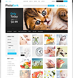 Art & Photography VirtueMart  Template 40387