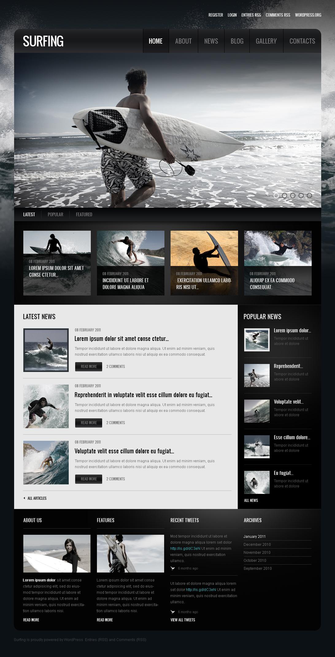 Surfing Moto CMS HTML Template - screenshot