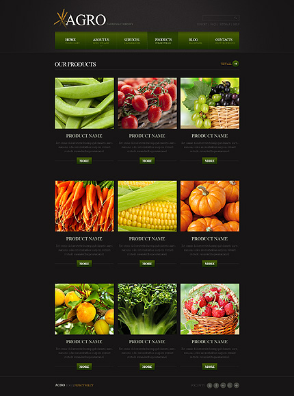 Template 40441 ( Products Page ) ADOBE Photoshop Screenshot