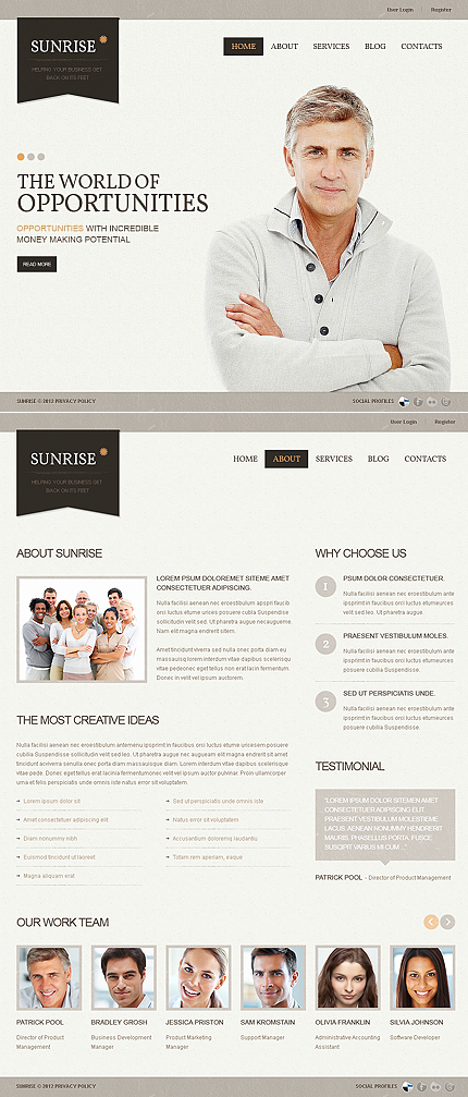 ADOBE Photoshop Template 40465 Home Page Screenshot