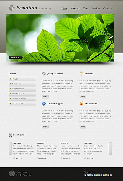 ADOBE Photoshop Template 40467 Home Page Screenshot