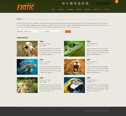 Template 40510 ( Search Page ) ADOBE Photoshop Screenshot