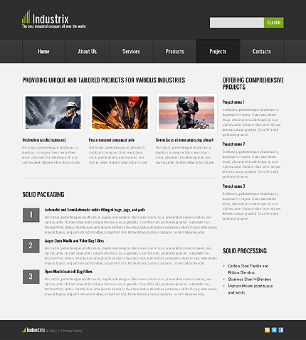 Template 40652 ( Projects Page ) ADOBE Photoshop Screenshot