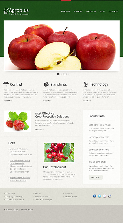 Joomla Theme/Template 40676 Main Page Screenshot
