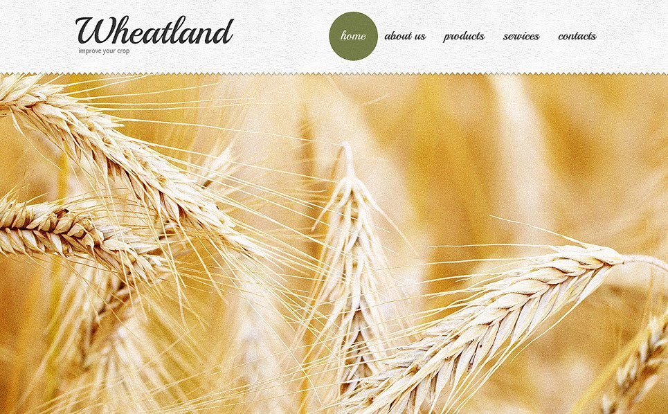 Template Web para Sites de Agricultura №40762 New Screenshots BIG
