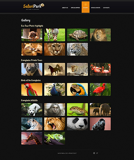 Template 40768 ( Gallery Page ) ADOBE Photoshop Screenshot