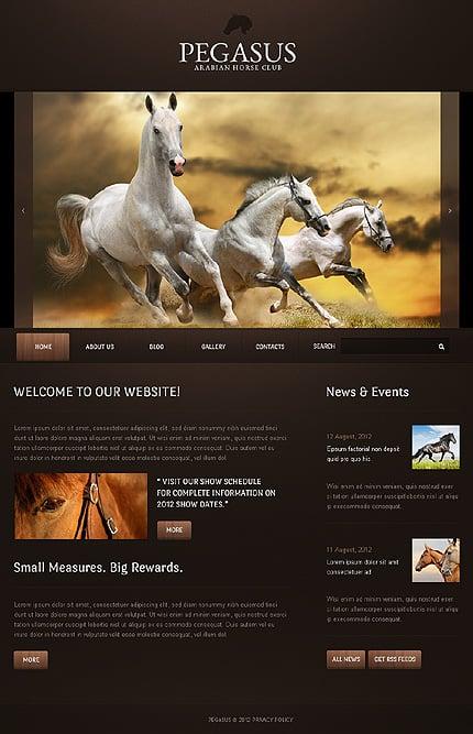 Drupal Template 40772 Main Page Screenshot
