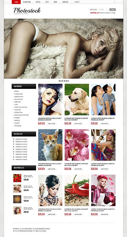 ADOBE Photoshop Template 40864 Home Page Screenshot