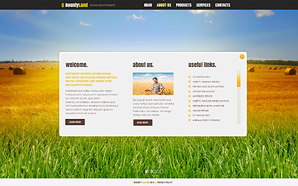 Template 40902 ( About Us Page ) ADOBE Photoshop Screenshot