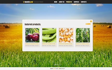 Template 40902 ( Products Page ) ADOBE Photoshop Screenshot