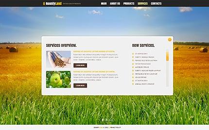 Template 40902 ( Services Page ) ADOBE Photoshop Screenshot