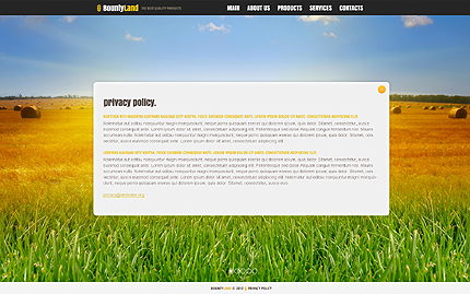 Template 40902 ( Privacy Policy Page ) ADOBE Photoshop Screenshot
