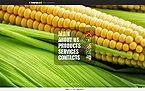 Agriculture Website  Template 40902