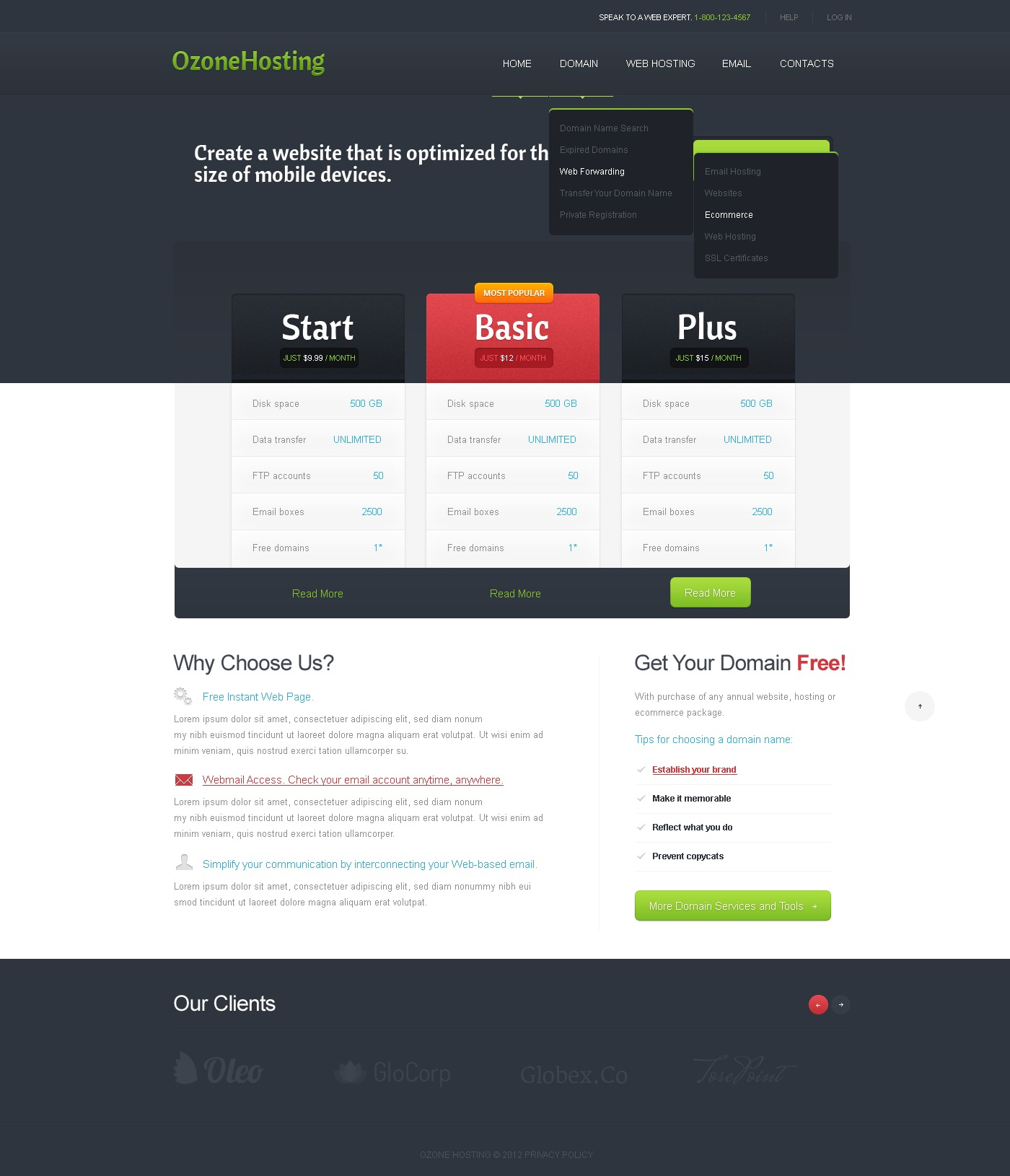Hosting Website Template