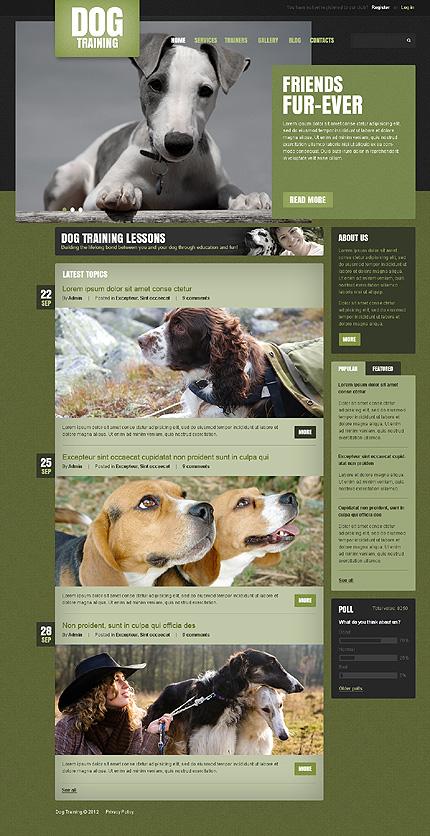 Drupal Template 41140 Main Page Screenshot