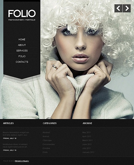 ADOBE Photoshop Template 41148 Home Page Screenshot