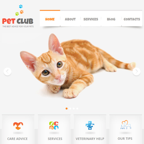 Pet Club - Facebook HTML CMS Template