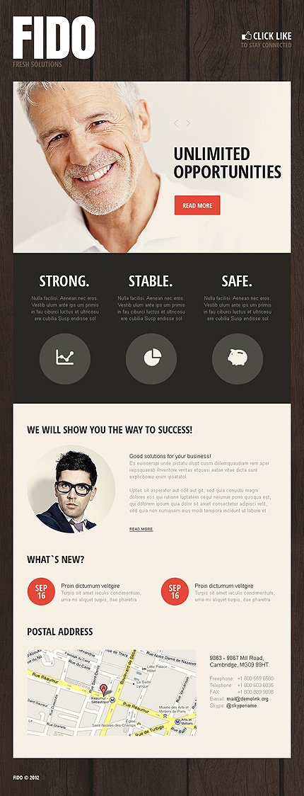 ADOBE Photoshop Template 41237 Home Page Screenshot