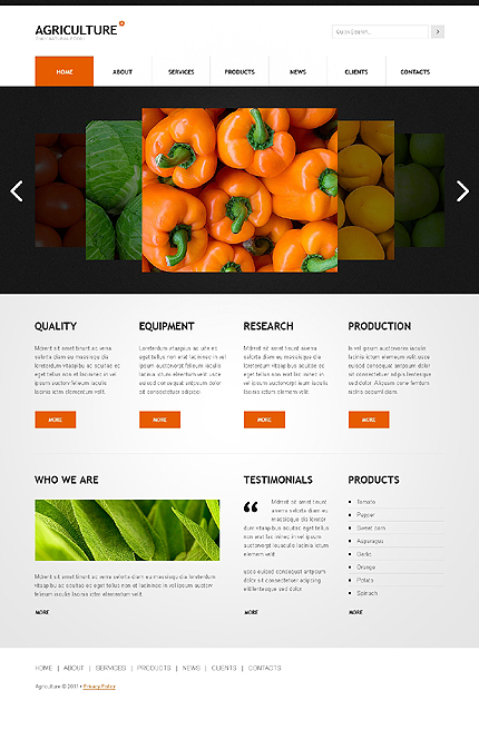 ADOBE Photoshop Template 41527 Home Page Screenshot