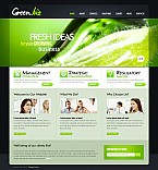 Flash CMS  Template 41536