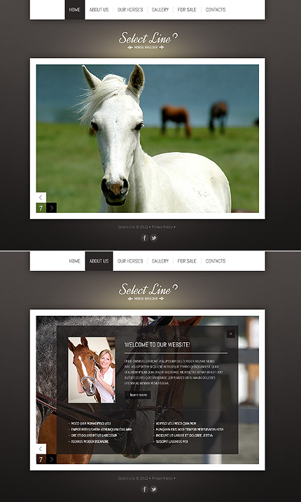 ADOBE Photoshop Template 41541 Home Page Screenshot
