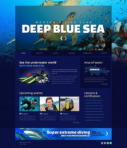 ADOBE Photoshop Template 41547 Home Page Screenshot