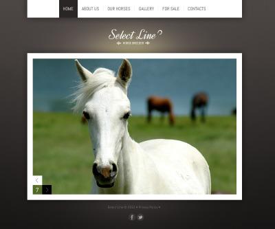 Flash CMS Vorlage für Pferd