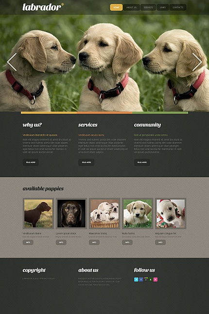 ADOBE Photoshop Template 41601 Home Page Screenshot