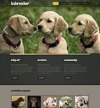 Animals & Pets Moto CMS HTML  Template 41601