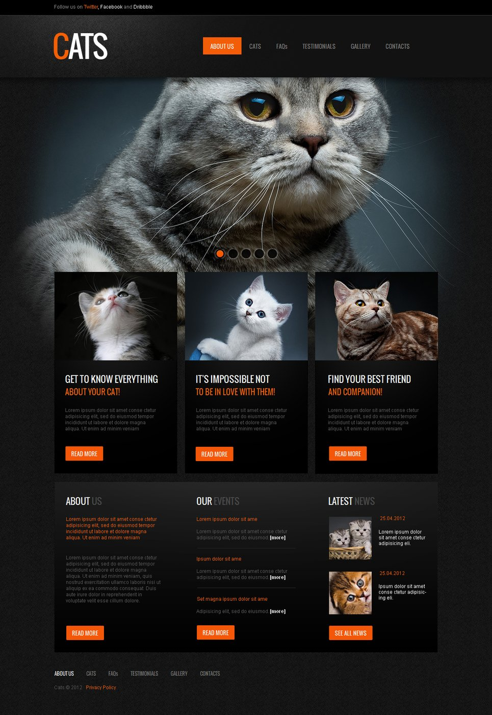 Cats Website Template for Pet Clubs and Breeders - image