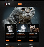 Animals & Pets Moto CMS HTML  Template 41603