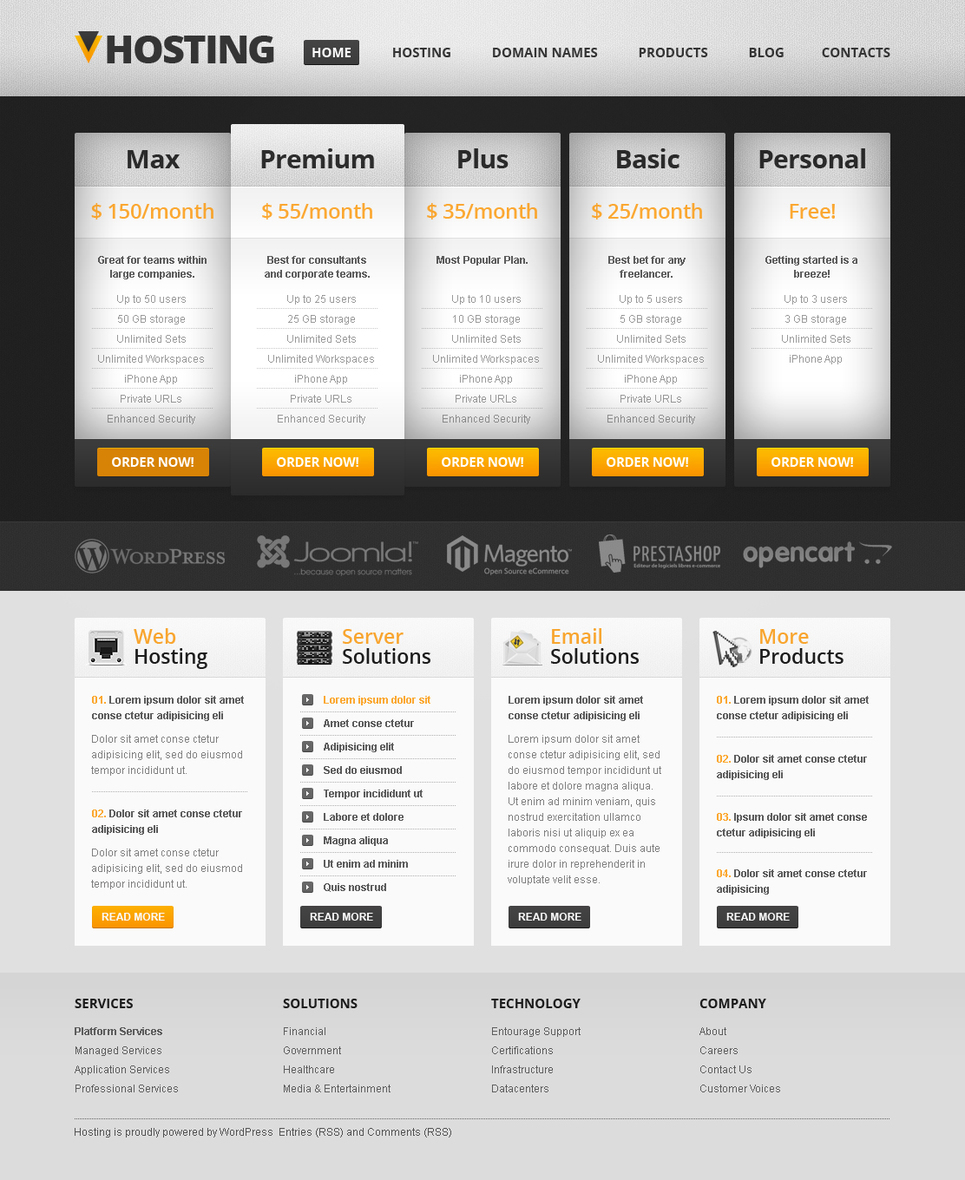 Web Hosting Services Template - image