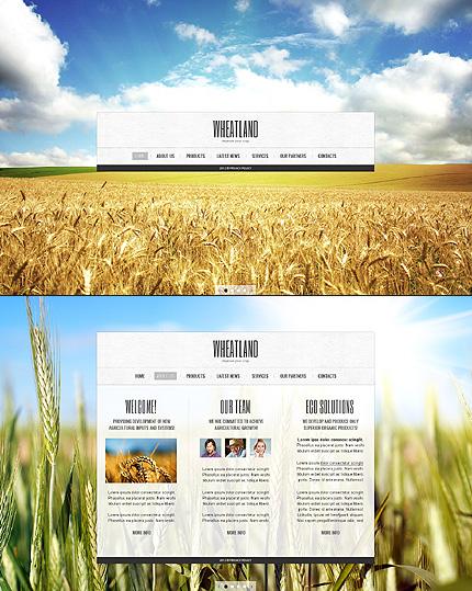 ADOBE Photoshop Template 41616 Home Page Screenshot