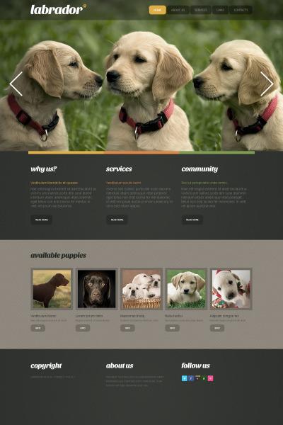 Dog Moto CMS HTML Şablon