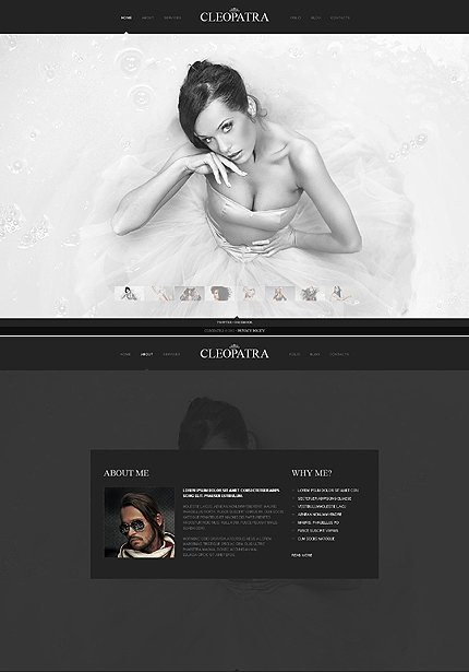ADOBE Photoshop Template 41728 Home Page Screenshot