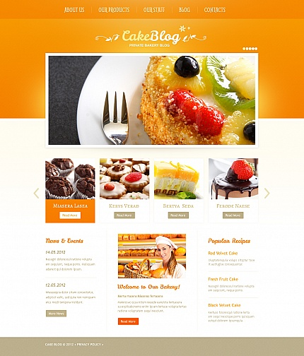 ADOBE Photoshop Template 41737 Home Page Screenshot