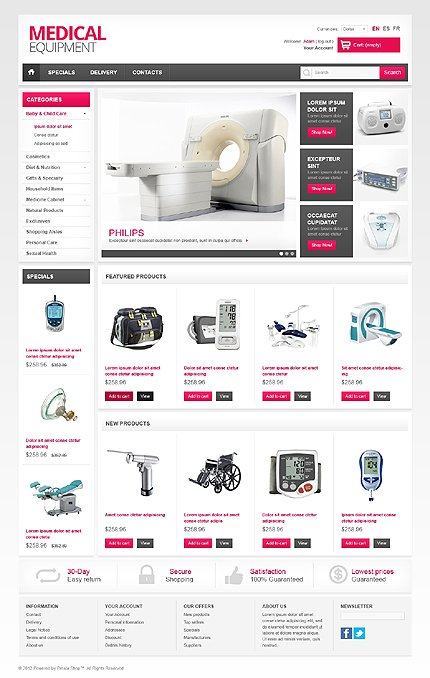 ADOBE Photoshop Template 41795 Home Page Screenshot