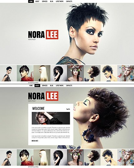 ADOBE Photoshop Template 41850 Home Page Screenshot