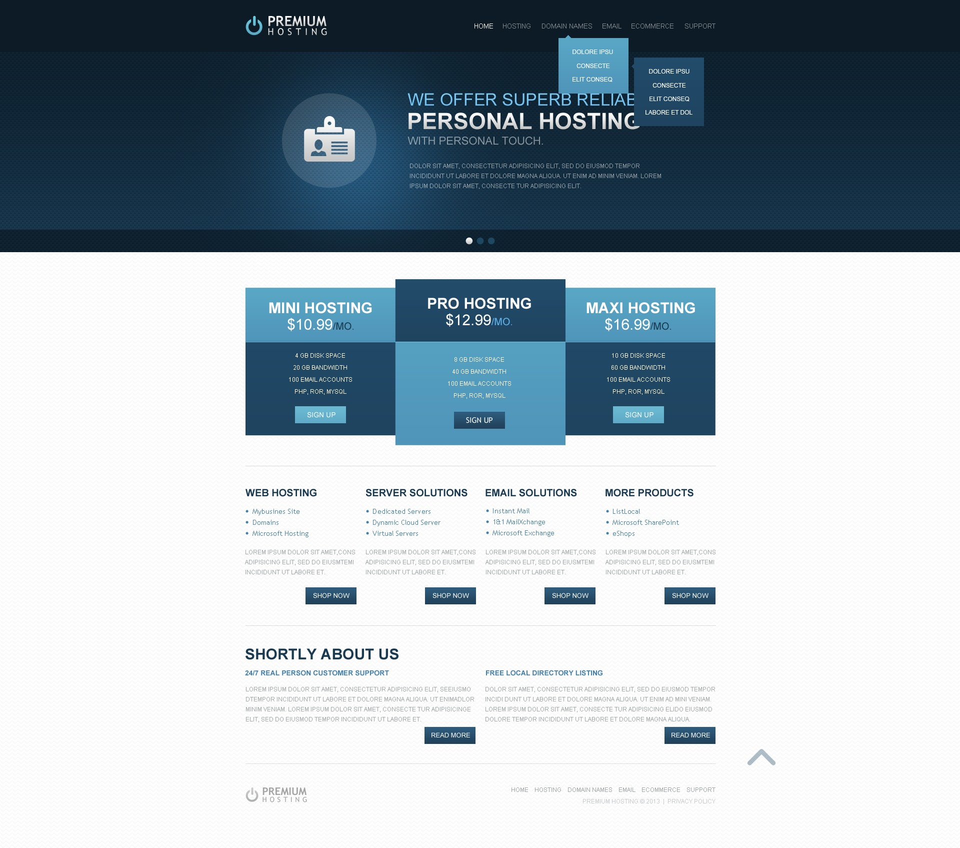 Hosting Website Templates