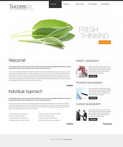 ADOBE Photoshop Template 41948 Home Page Screenshot