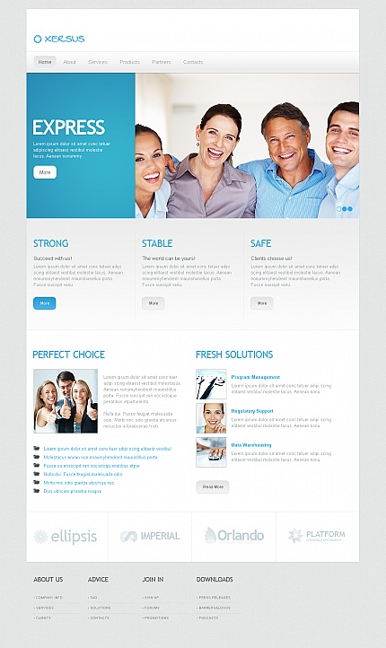 ADOBE Photoshop Template 41953 Home Page Screenshot