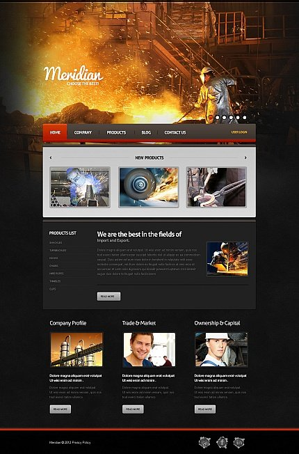 ADOBE Photoshop Template 41955 Home Page Screenshot