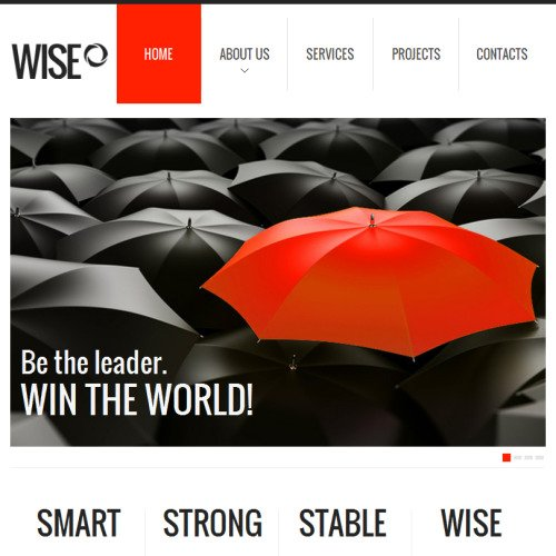 Wise Business - Facebook HTML CMS Template
