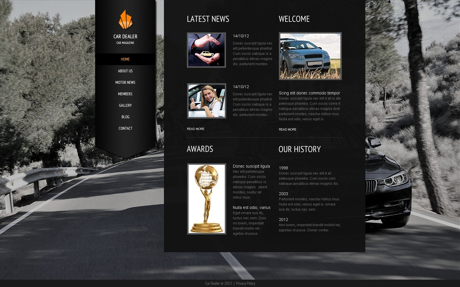New & Used Cars Website Template #38522