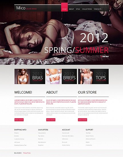 ADOBE Photoshop Template 42107 Home Page Screenshot