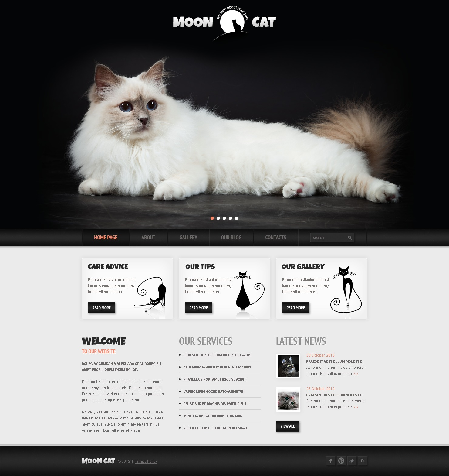 """Conceptual Cat"" - адаптивний WordPress шаблон №42117"