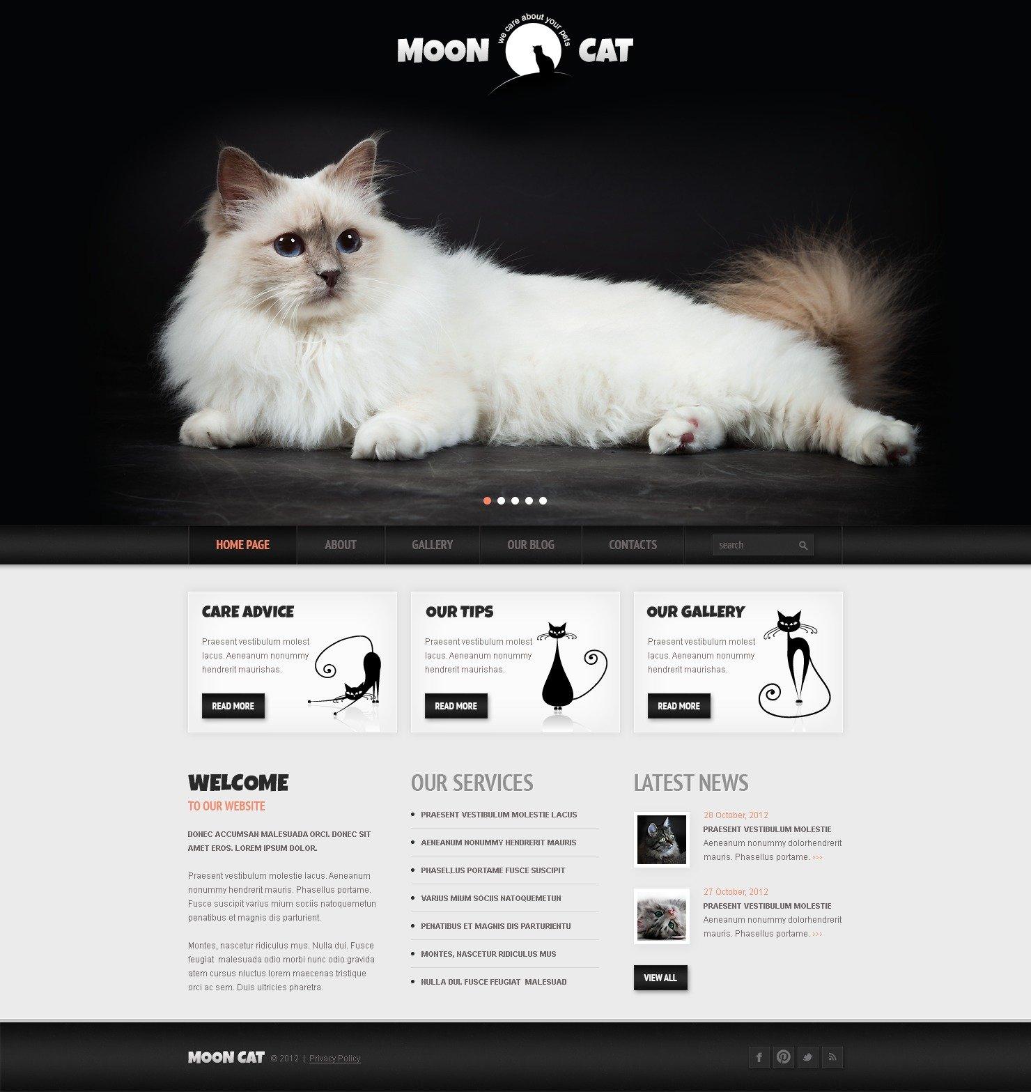 """Conceptual Cat"" 响应式WordPress模板 #42117"