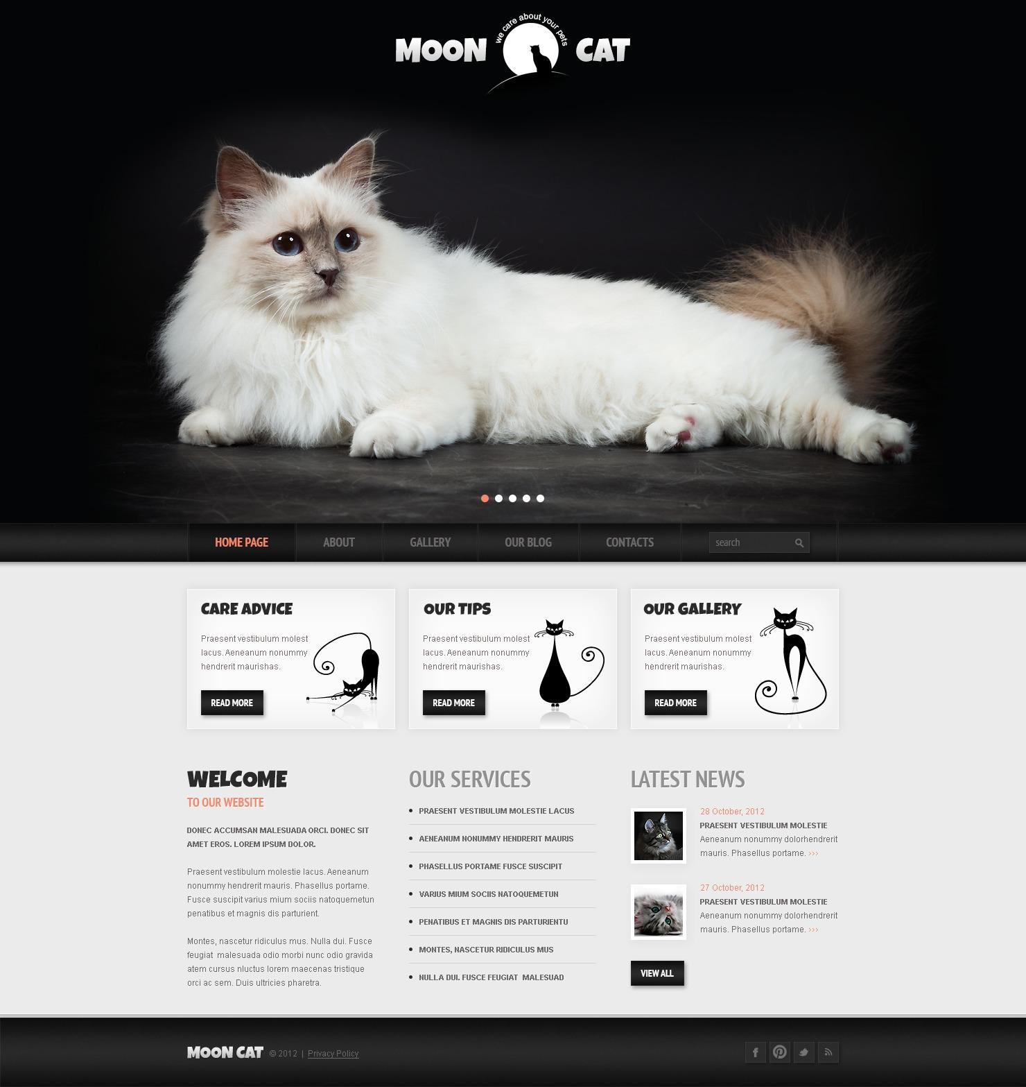 Reszponzív Conceptual Cat WordPress sablon 42117 - képernyőkép