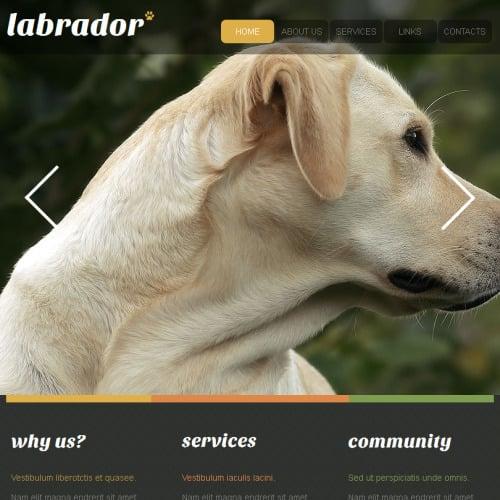 Labrador - Facebook HTML CMS Template
